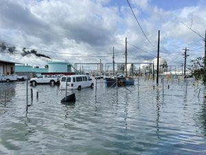 Louisiana Lynx: Rhodes' Connections to Hurricane Ida